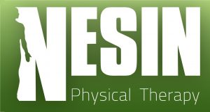 Nesin Therapy logoH - edited